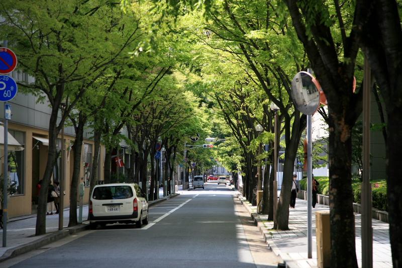 kyoryuchi43.jpg